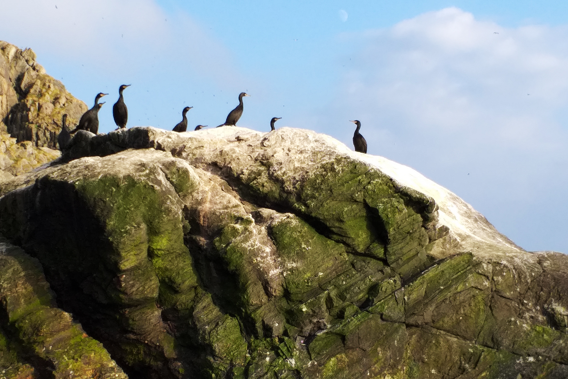 Runde Boattrip Bird Mountain